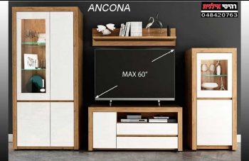 ANCONA  1 VA